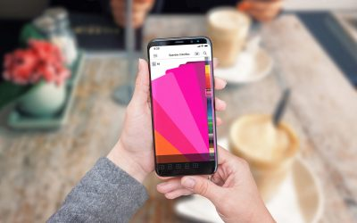 Spandex ColorBox App – New, Free, and completely changes the way you will think about colours!