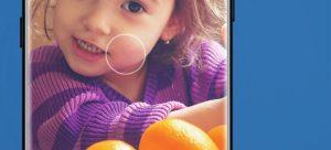 SpandexColorBox_colores-seleccion