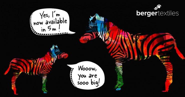 Berger be.tex Blackback Zebra FR, ahora disponible en 5 metros de ancho